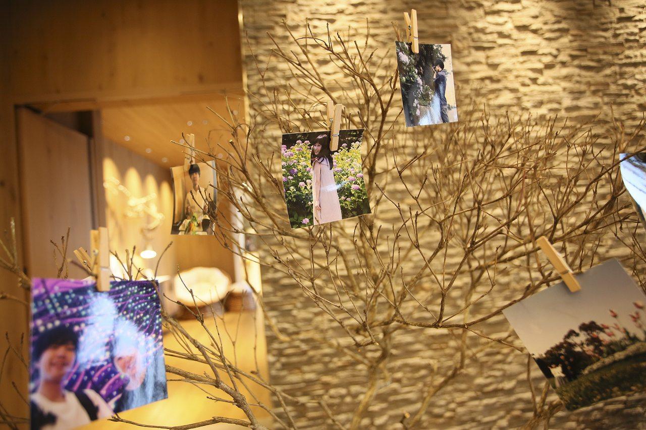 香川県高松市の結婚式場アナザースタイルのウエディングツリーに二人の写真を飾る